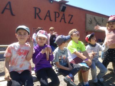 Tierra Rapaz_12