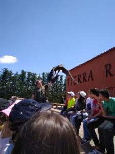 Tierra Rapaz_4